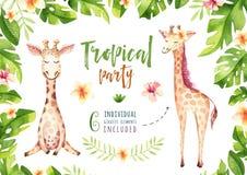 Plantas tropicais tiradas mão da aquarela ajustadas e girafa Folhas de palmeira exóticas, árvore da selva, elementos tropicos da  Foto de Stock Royalty Free