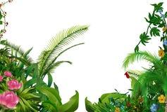 Plantas tropicales stock de ilustración