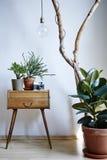 Plantas urbanas em elementos individuais do projeto da luz do dia ensolarada moderna do apartamento imagem de stock royalty free