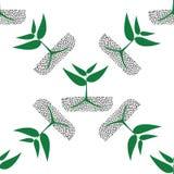 Plantas verdes crecientes en el suelo, modelo inconsútil Imagen de archivo libre de regalías
