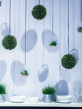 Plantas verdes y placas colgantes en estante en estudio Imagen de archivo