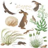 Plantas y animales de la estepa fijados Foto de archivo libre de regalías