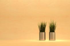 Plantas y crisoles metálicos. Foto de archivo libre de regalías