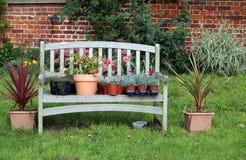 Plantas y flores en potes en un asiento o un banco de madera de jardín Fotos de archivo