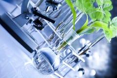 Plantas y laboratorio Imagenes de archivo