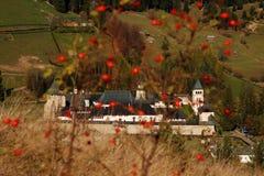 Plantas y monasterio Fotos de archivo