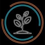Plantasymbolsvektor, växande träd, royaltyfri illustrationer