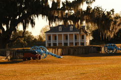 plantation Image stock