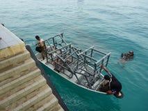 Plantation artificielle de récif Photo libre de droits