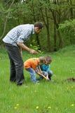 Plantation d'un arbre Photographie stock libre de droits