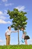 Plantation d'un arbre photo libre de droits