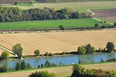 Plantation dans Champagne Photos stock