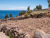 Plantation de maïs chez le Lac Titicaca de l'île de Taquile Image libre de droits