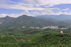 Plantation de pamplemousse de village de gaozhai Images stock