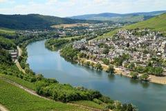 Plantation de raisin sur la rivière Moezel en Allemagne image libre de droits