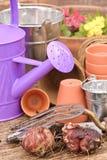 Plantation de source Image stock