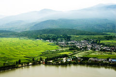 Plantation de zone de la Chine Image stock