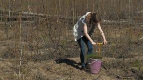 Plantation des jeunes arbres d'arbre Restauration de forêt, protection de l'écologie banque de vidéos