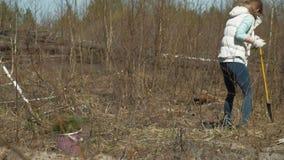 Plantation des jeunes arbres d'arbre Restauration de for?t, protection de l'?cologie banque de vidéos