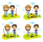 Plantation du vecteur de processus de personnages de dessin animé d'arbre Images libres de droits