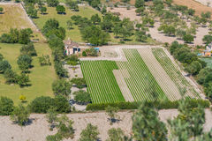 Plantation fields in Mallorca Royalty Free Stock Image
