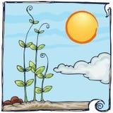 Plantation hand draw on sunny day. Hand draw illustration of plantation on sunny day Royalty Free Stock Photo