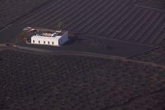 Plantation on Lanzarote Royalty Free Stock Photos