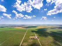 Plantation rouge de vignoble vue de la vue aérienne ci-dessus Photos libres de droits
