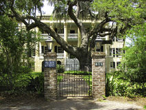 Plantation style house. An example of a white plantation style house Stock Photos