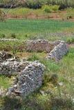 Plantation sur Malte Photographie stock