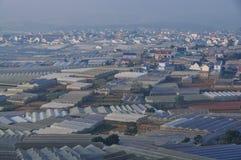 Plantation végétale dans Dalat, Vietnam Photographie stock libre de droits