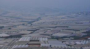 Plantation végétale dans Dalat, Vietnam Image libre de droits