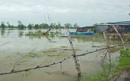 Flooding homes and rice fields. Plantations and houses were flooded due to the storm stock images