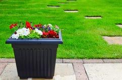 plantatorzy ogrodowe Zdjęcia Stock