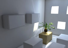 Plante en pot dans une salle carrée image libre de droits