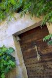 Plante grimpante de Virginie sur une façade Image stock