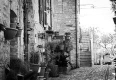 Plante los floreros que cuelgan en la pared de ladrillo en Spello Fotografía de archivo