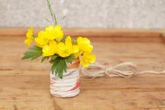 Plante médicinale - renoncule de rampement Photo stock