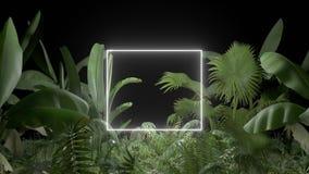 Plante tropicale avec la lampe au néon sur un fond noir illustration stock