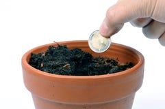 Plante una moneda del dos-euro en una maceta imagen de archivo libre de regalías