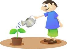 Plante una planta Foto de archivo