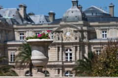 Planted flowerpot in the Jardin du Luxembourg in Paris. On a sunny summer day, Paris, France, Europe royalty free stock photos
