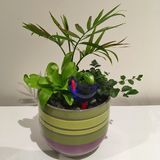 Planted pot with glass bird. Palm and ferns in planted pot with glass bird ornament stock photo