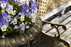 Planter with pansies and bench Stock Photography