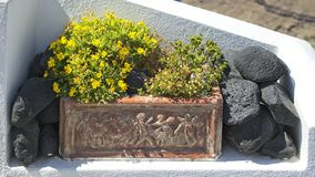 Planter in Santorini, Greece royalty free stock photography