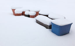 Planter snow Royalty Free Stock Photos