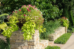 Planter on Stone Wall. Flower pot or planter with geranium, calibrachoa (million bells) and sweet potato vine on stone wall, framing house entrance Royalty Free Stock Photos