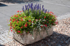 Planter. Street planter full of flowers Royalty Free Stock Photos