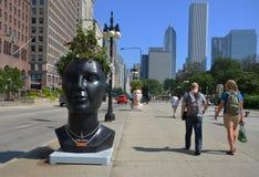 Planter van installatie de Groene Ideeën, Chicago van de binnenstad Stock Foto