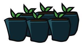 Plantera blomman, i att arbeta i trädgården för kruka royaltyfri illustrationer
